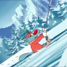 Les insectes à ski