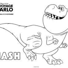 Le Voyage d'Arlo - Nash