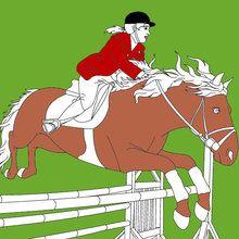 sport, Coloriages sur l'équitation