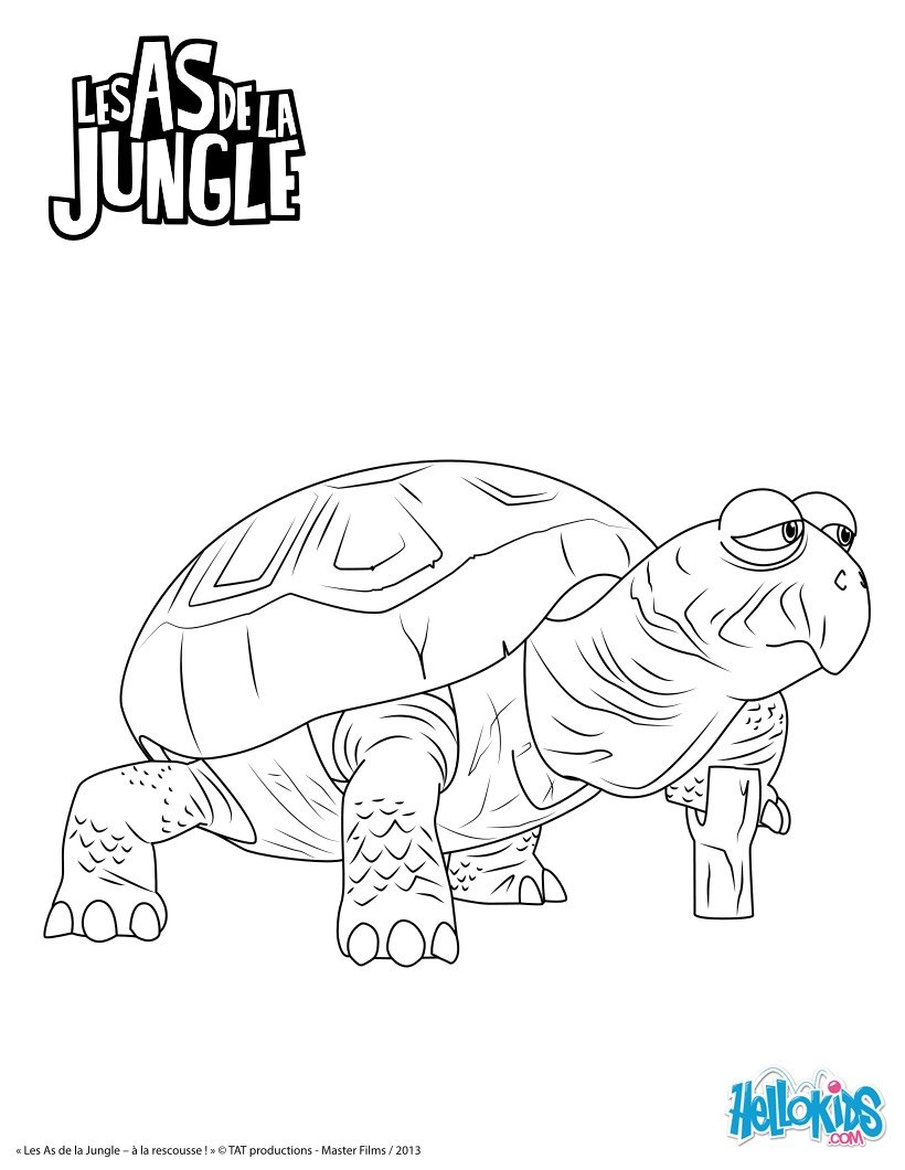 Coloriages karapas - Dessin de jungle ...