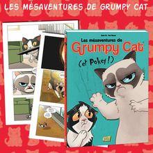 Gagne des BD de Grumpy Cat !