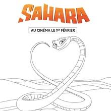 Sahara : Eva