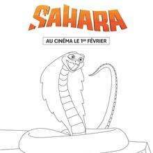 Coloriage SAHARA