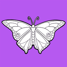 Coloriage : Le papillon
