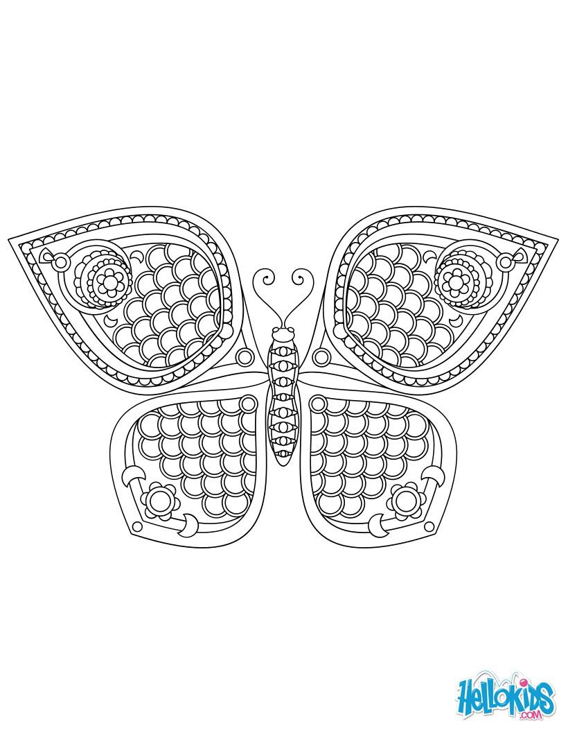 Papillon Mandala