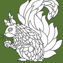 Écureuil mandala