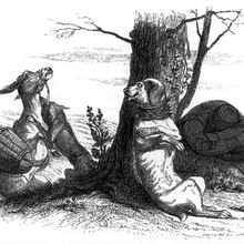 Histoire : Le Loup et le Chien