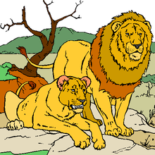 Histoire : Le Lion amoureux