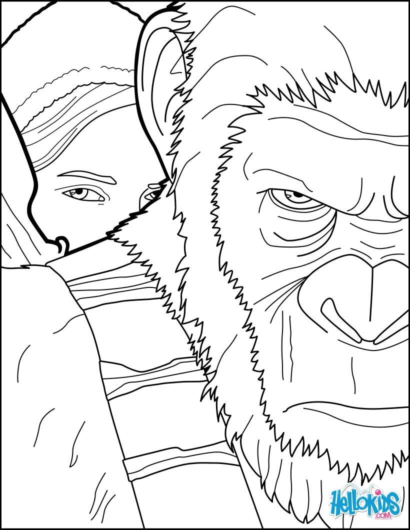 Coloriages coloriage la plan te des singes 1 fr - Dessin de singes ...