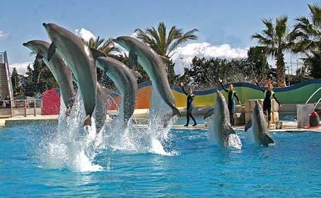 Aquasplash-Marineland