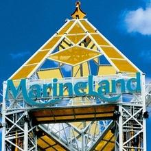 Histoire : Aquasplash-Marineland