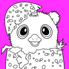 Coloriages Hatchimals Owlicorn Fr Hellokids Com
