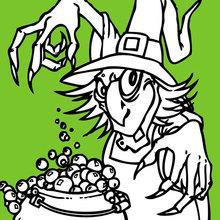 La sorcière prépare une potion magique