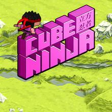 Jeu : Cube Ninja