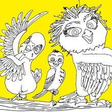 Kiki, Ricky et Olga