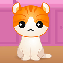 Jeu : Kitty Quiz