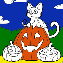 Coloriage d'Halloween : Chat, Citrouille, Halloween