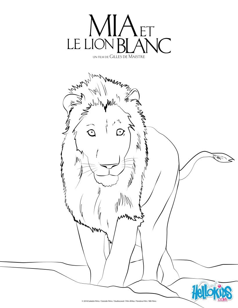 Coloriages Le Lion Blanc Fr Hellokids Com