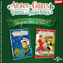 Gagne des DVD d'Apollon le grillon des Drôles de petites bêtes !