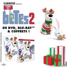 COMME DES BÊTES 2 en DVD et Blu-Ray