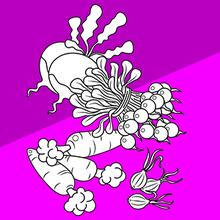 Coloriage : Les legumes-racines