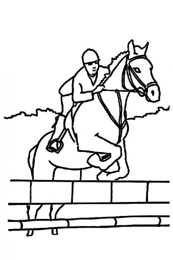 Coloriage gratuit des membres de jedessine chevaux - Coloriage cheveaux ...