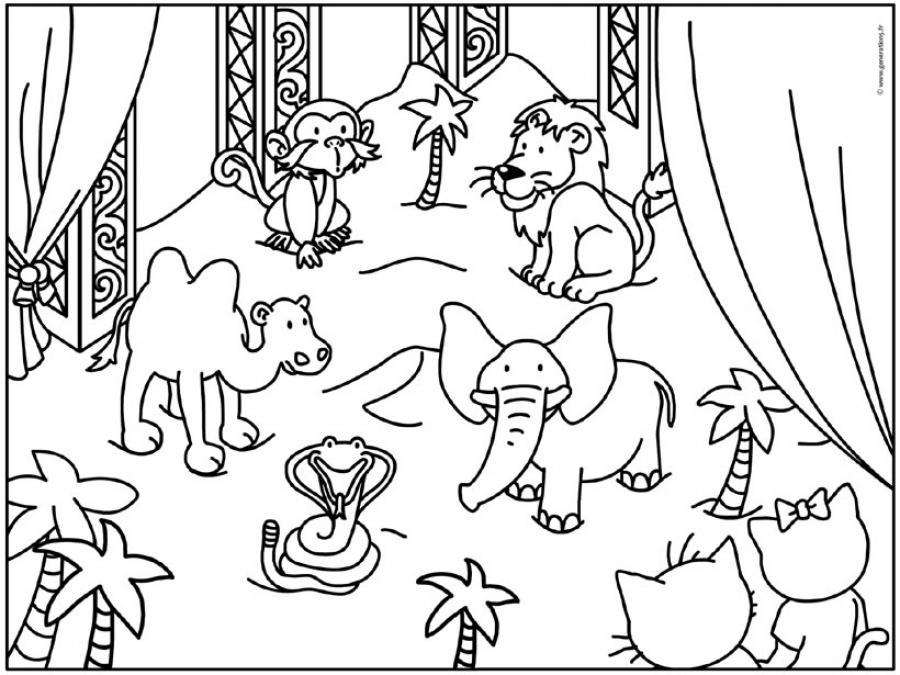 coloriage des animaux