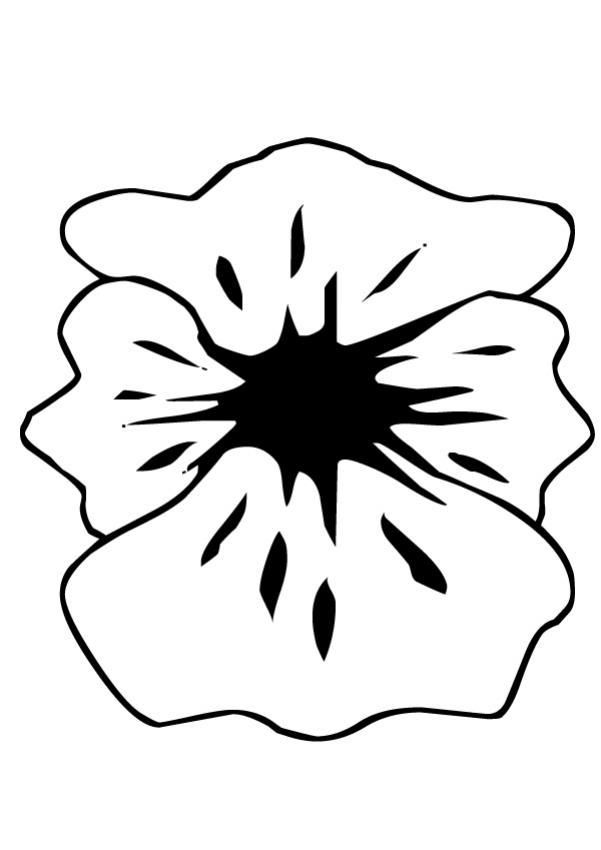 Coloriages fleur de coquelicot - Coloriage fleur gentiane ...