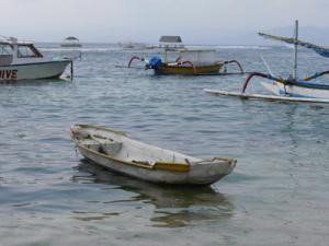 la-culture-des-algues