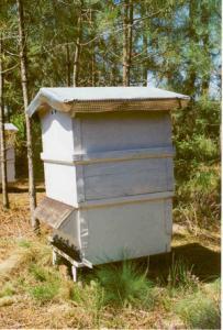 les-abeilles