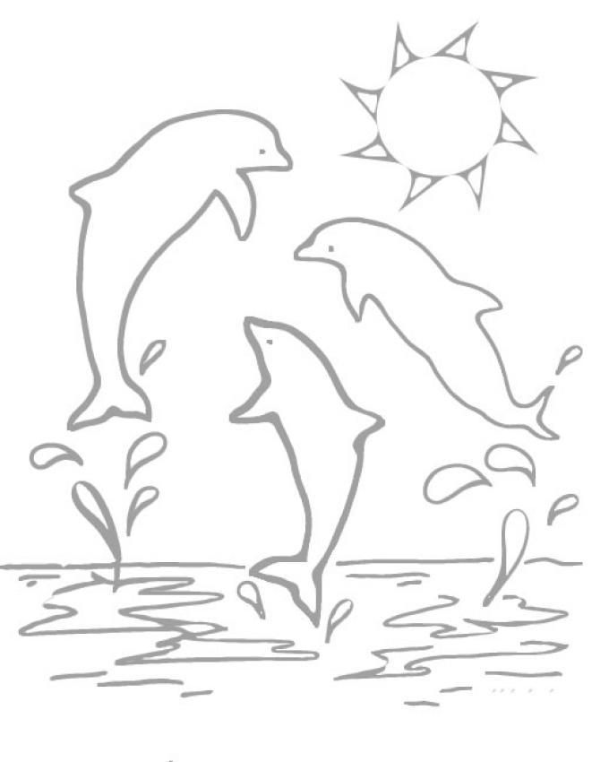 coloriage de dauphins