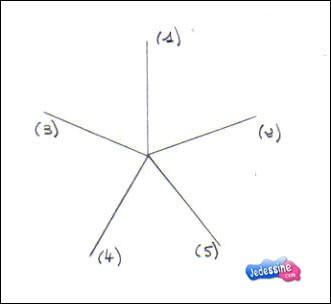Incroyable Comment dessiner une étoile de mer - fr.hellokids.com KI-58
