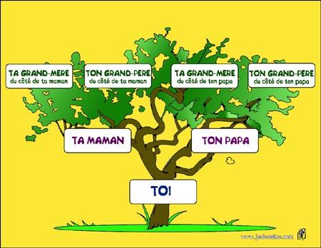 Comment Faire Ton Arbre Genealogique