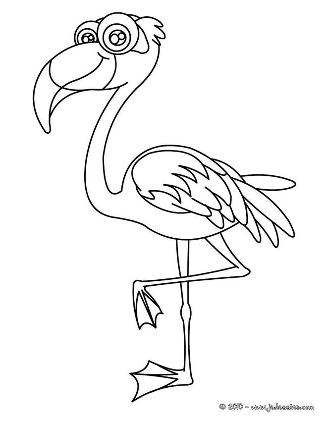 Coloriage D Oiseaux Coloriages Coloriage A Imprimer Gratuit
