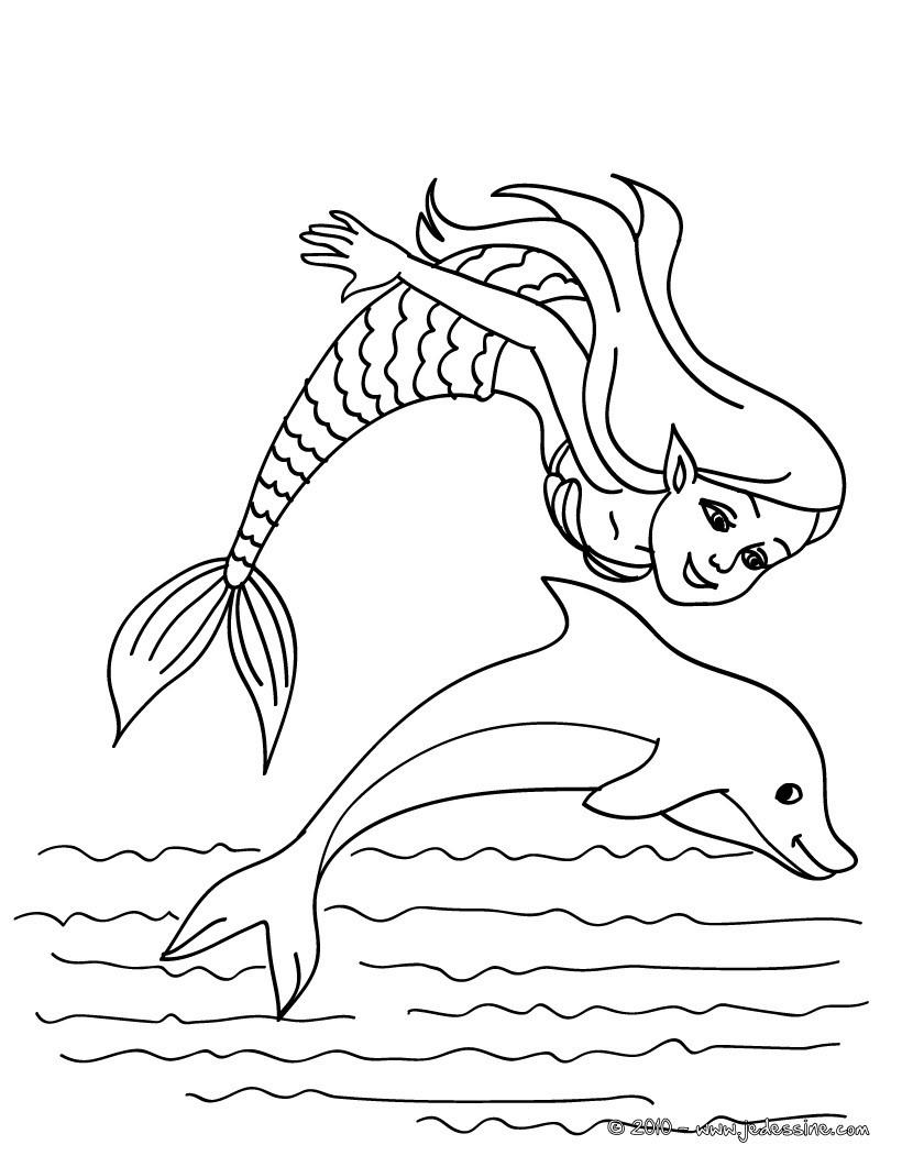 coloriage sirene et dauphin